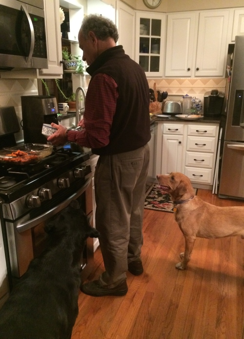 Dogs love Thanksgiving too.